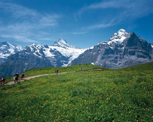 美しい国スイスを旅して感じたこと
